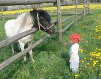 Pony und Kind