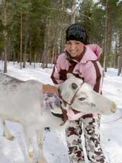Winterurlaub Finnland