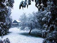 Bodensee Winterurlaub