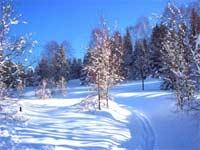 Schnee Erzgebirge