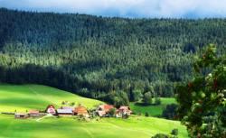 Schwarzwald-Bauernhof-billig